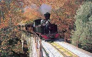 The steam train to Milies